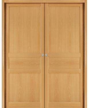 Porte d 39 int rieur de maison standard ou sur mesure e couliss for Porte bois standard